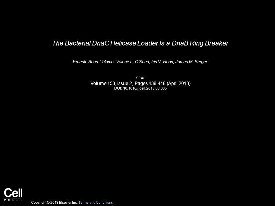 The Bacterial DnaC Helicase Loader Is a DnaB Ring Breaker Ernesto Arias-Palomo, Valerie L. O'Shea, Iris V. Hood, James M. Berger Cell Volume 153, Issu
