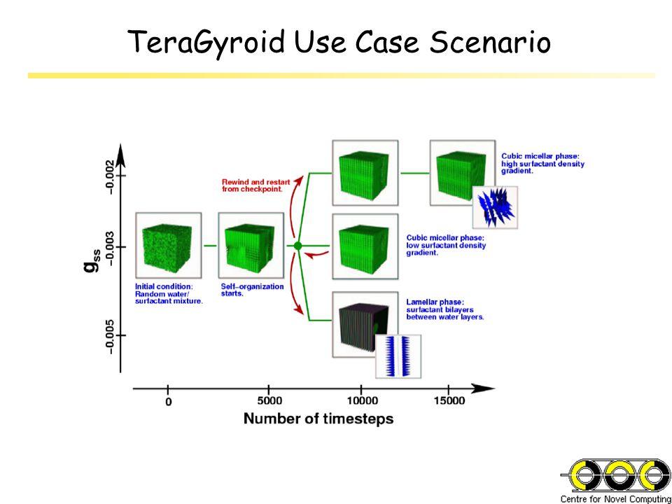 TeraGyroid Use Case Scenario