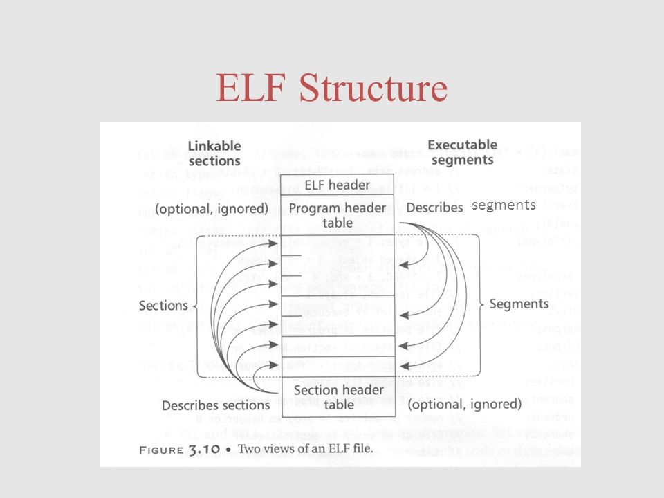 ELF Structure segments