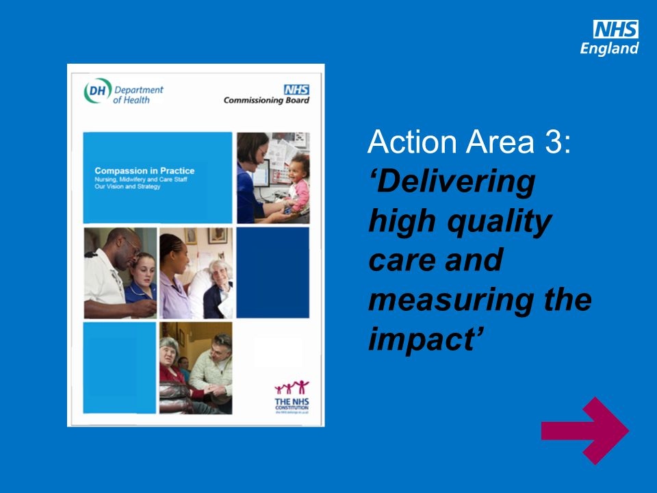 www.england.nhs.uk Action Area 3: 'Delivering high quality care and measuring the impact'