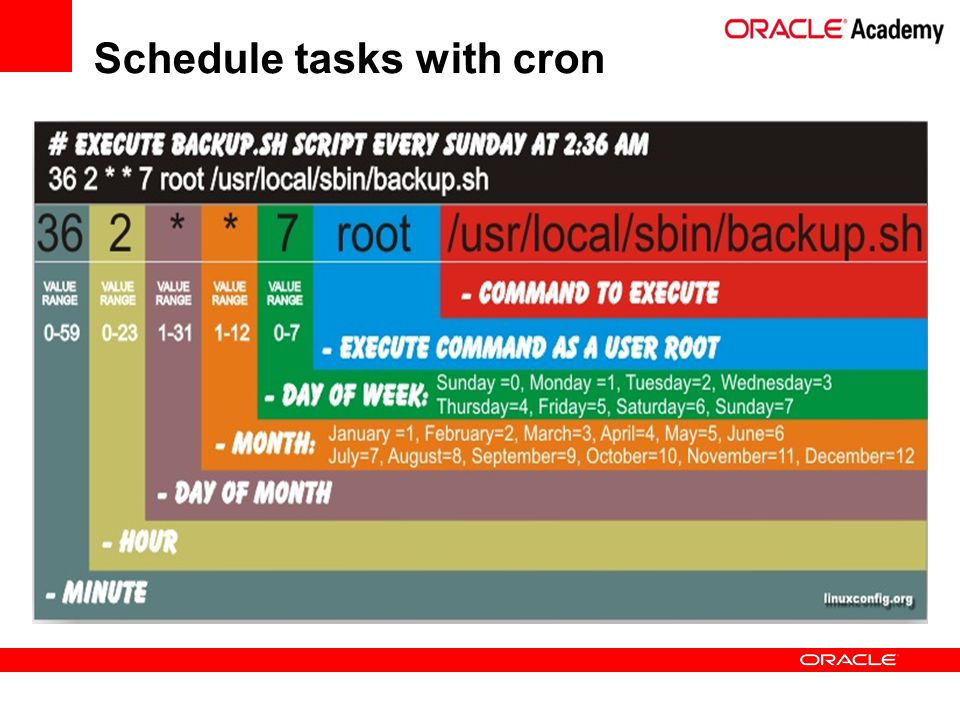 Schedule tasks with cron