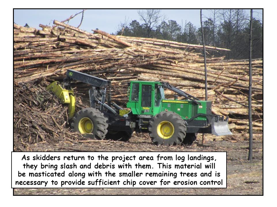 As skidders return to the project area from log landings, they bring slash and debris with them. This material will be masticated along with the small