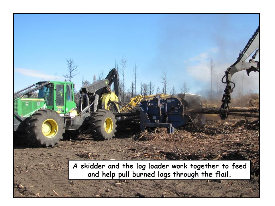 A skidder and the log loader work together to feed and help pull burned logs through the flail.