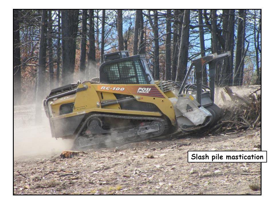 Slash pile mastication