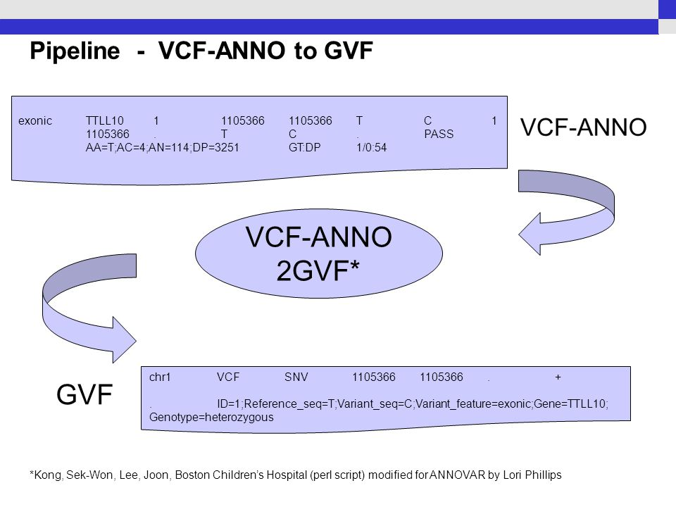 Pipeline - VCF-ANNO to GVF exonicTTLL10111053661105366TC1 1105366.TC.PASS AA=T;AC=4;AN=114;DP=3251GT:DP1/0:54 VCF-ANNO 2GVF* GVF chr1VCFSNV11053661105366.+.ID=1;Reference_seq=T;Variant_seq=C;Variant_feature=exonic;Gene=TTLL10; Genotype=heterozygous *Kong, Sek-Won, Lee, Joon, Boston Children's Hospital (perl script) modified for ANNOVAR by Lori Phillips