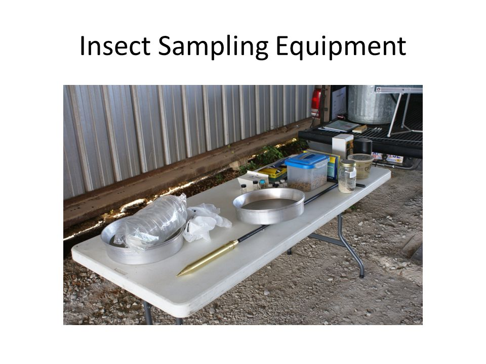 Insect Sampling Equipment
