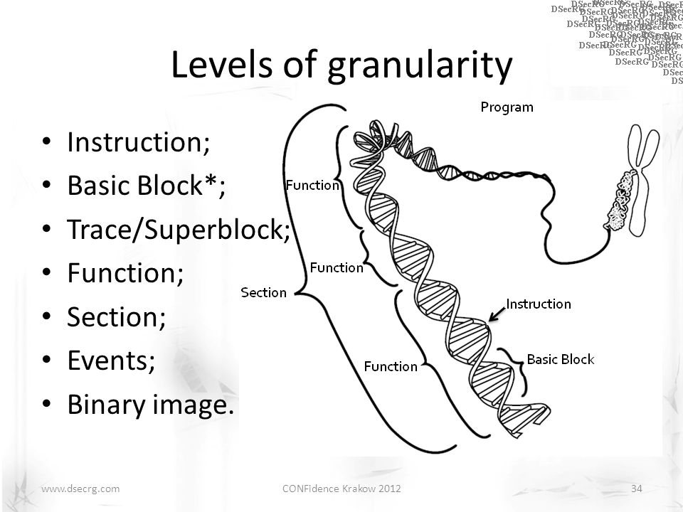 Levels of granularity Instruction; Basic Block*; Trace/Superblock; Function; Section; Events; Binary image.