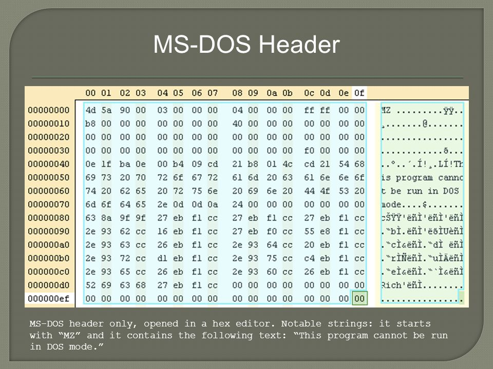 MS-DOS Header MS-DOS header only, opened in a hex editor.