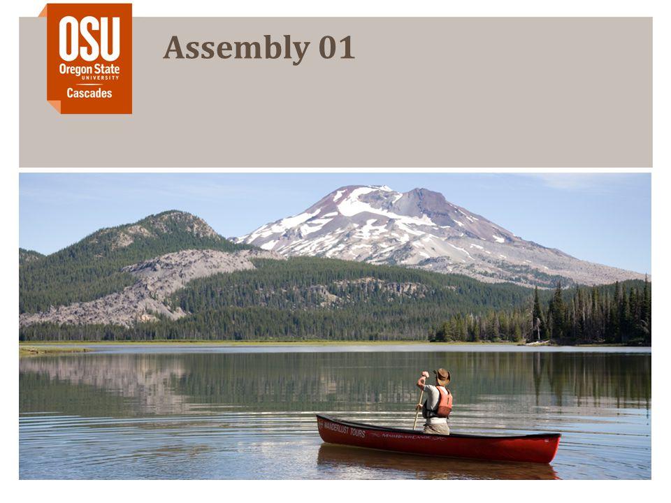 Assembly 01