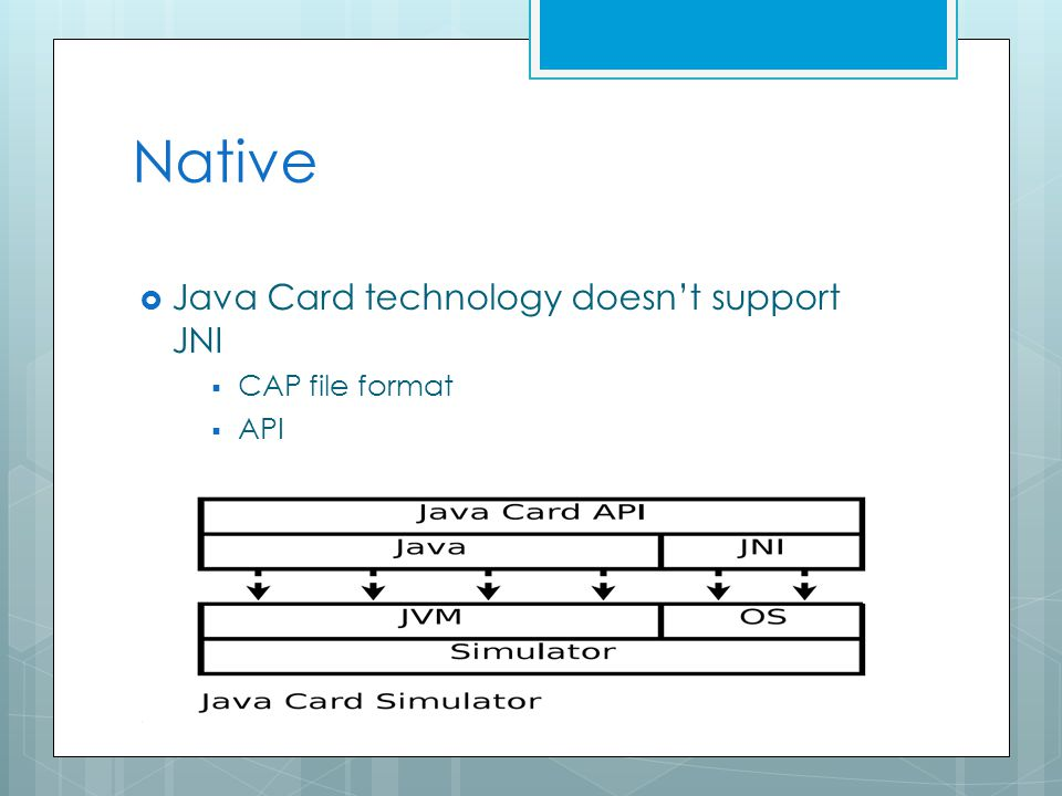 Native  Java Card technology doesn't support JNI  CAP file format  API