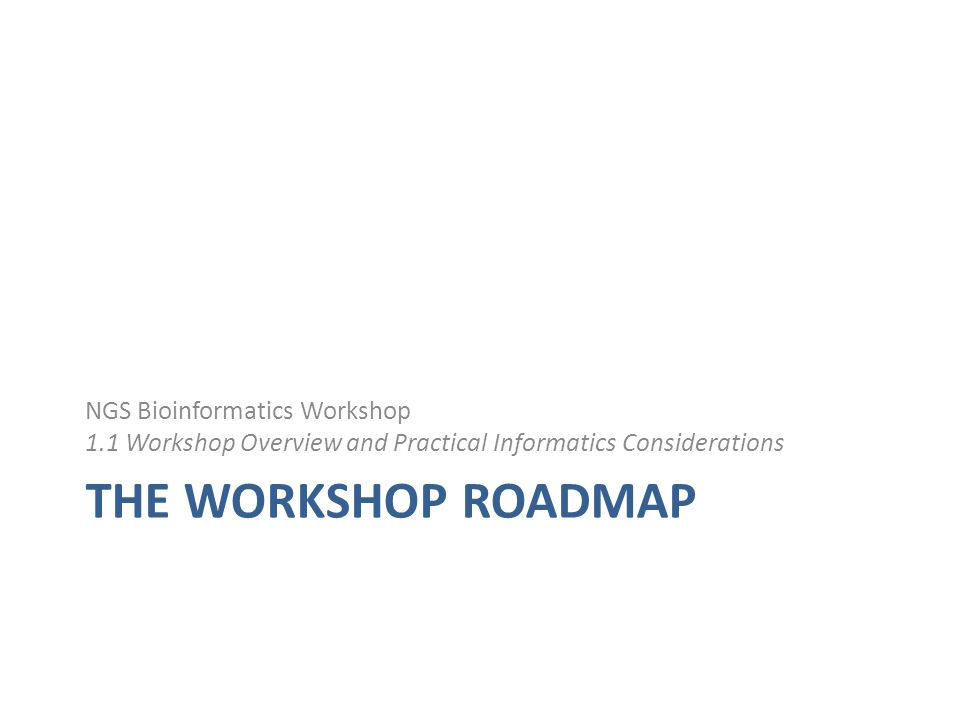 THE WORKSHOP ROADMAP NGS Bioinformatics Workshop 1.1 Workshop Overview and Practical Informatics Considerations
