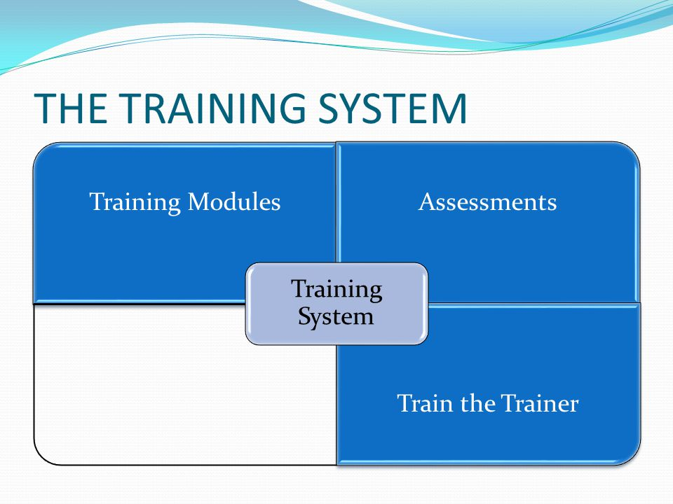 THE TRAINING SYSTEM Training ModulesAssessments Train the Trainer Training System