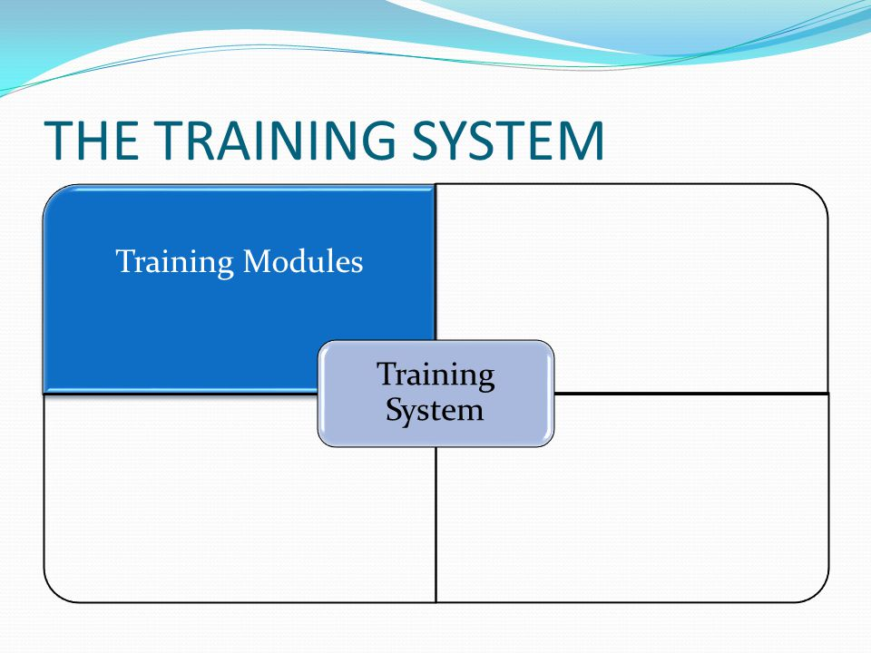 THE TRAINING SYSTEM Training Modules Training System