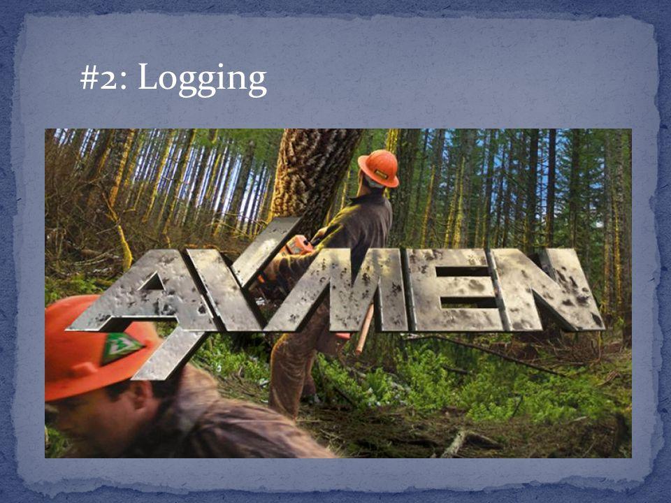 #2: Logging