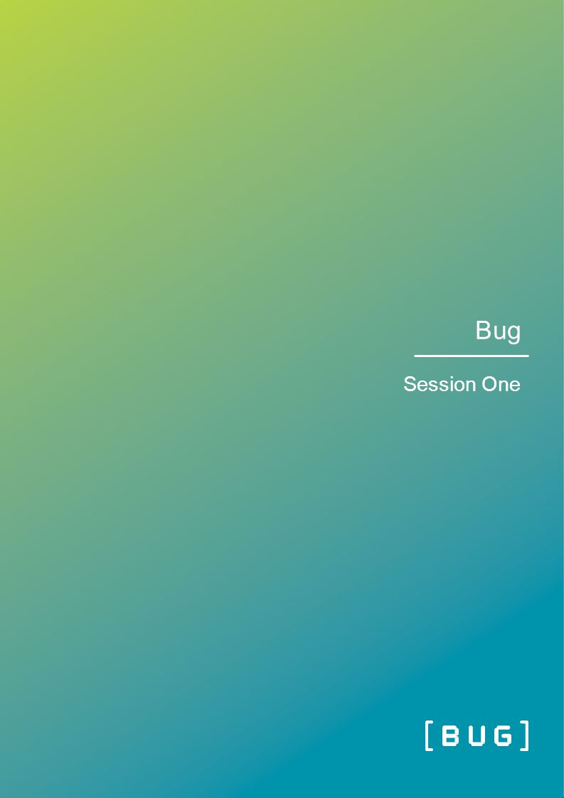 Bug Session One