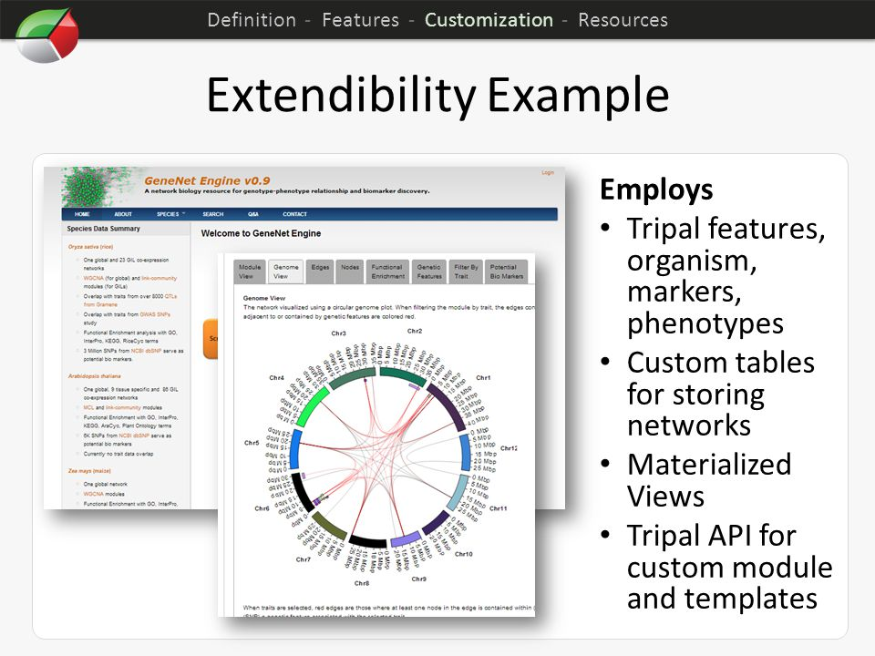Extendibility Example Employs Tripal features, organism, markers, phenotypes Custom tables for storing networks Materialized Views Tripal API for cust