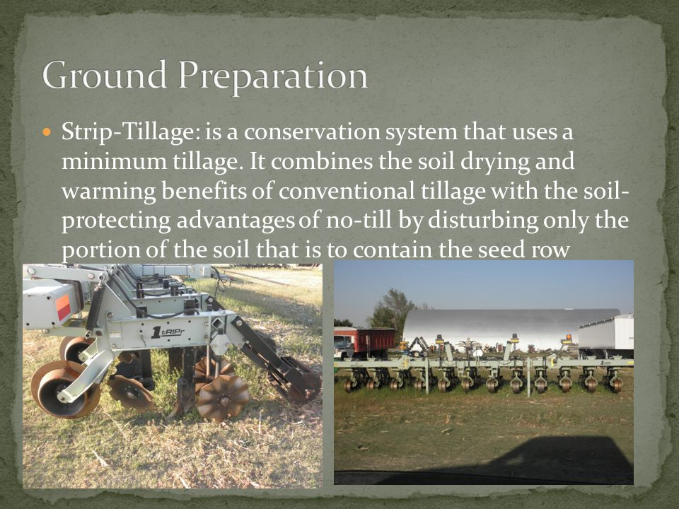 Strip-Tillage: is a conservation system that uses a minimum tillage.