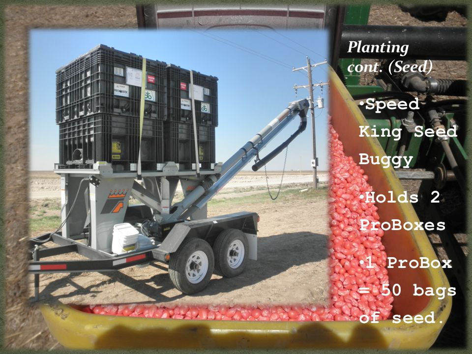 Speed King Seed Buggy Holds 2 ProBoxes 1 ProBox = 50 bags of seed.