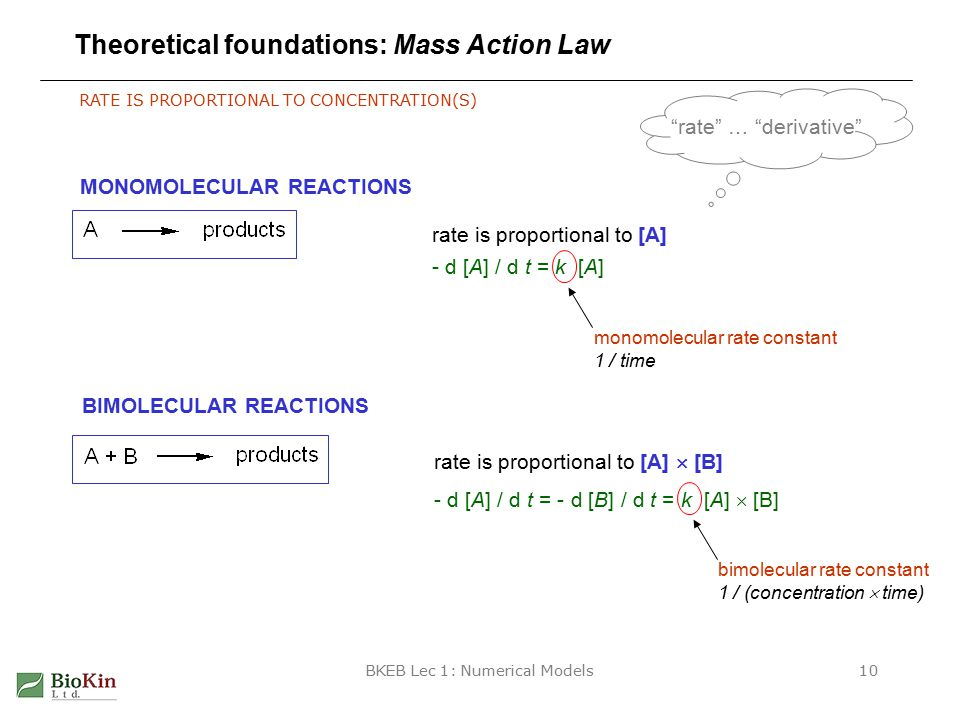 BKEB Lec 1: Numerical Models10 Theoretical foundations: Mass Action Law RATE IS PROPORTIONAL TO CONCENTRATION(S) MONOMOLECULAR REACTIONS rate is proportional to [A] BIMOLECULAR REACTIONS rate is proportional to [A]  [B] - d [A] / d t = k [A] monomolecular rate constant 1 / time - d [A] / d t = - d [B] / d t = k [A]  [B] bimolecular rate constant 1 / (concentration  time) rate … derivative