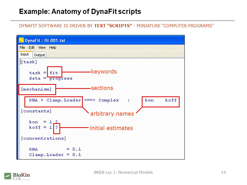 BKEB Lec 1: Numerical Models19 Example: Anatomy of DynaFit scripts DYNAFIT SOFTWARE IS DRIVEN BY TEXT SCRIPTS - MINIATURE COMPUTER PROGRAMS sections keywords arbitrary names initial estimates