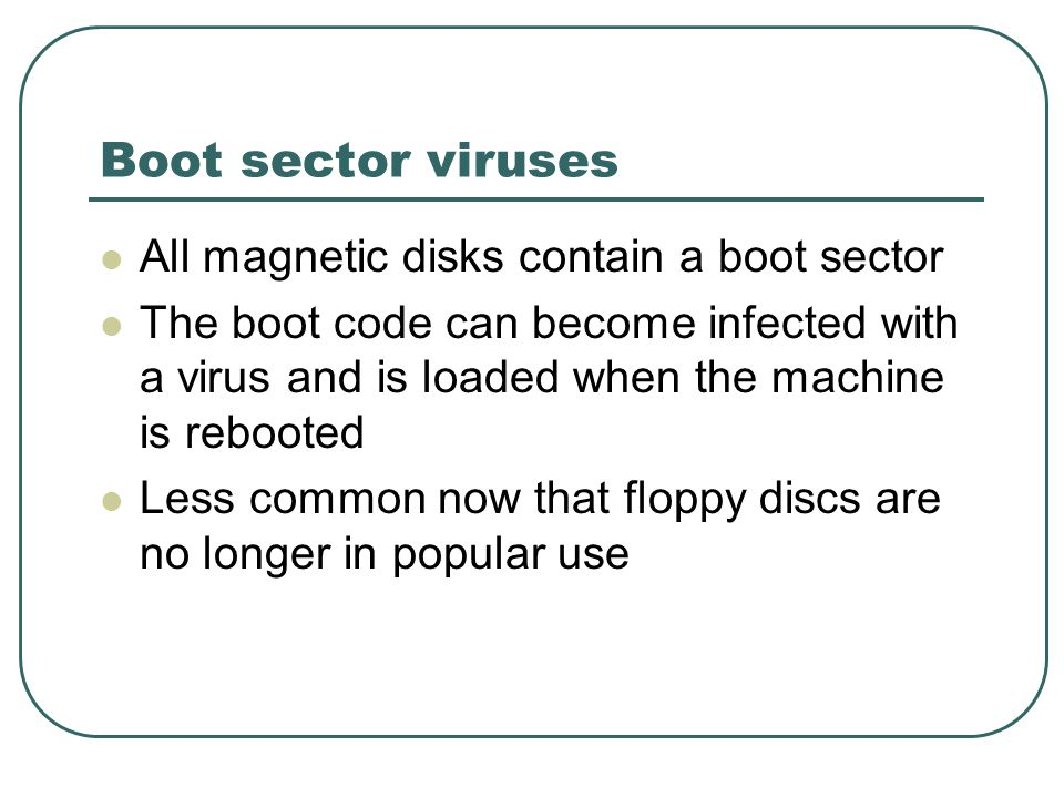 Boot sector viruses All magnetic disks contain a boot sector The boot code can become infected with a virus and is loaded when the machine is rebooted Less common now that floppy discs are no longer in popular use