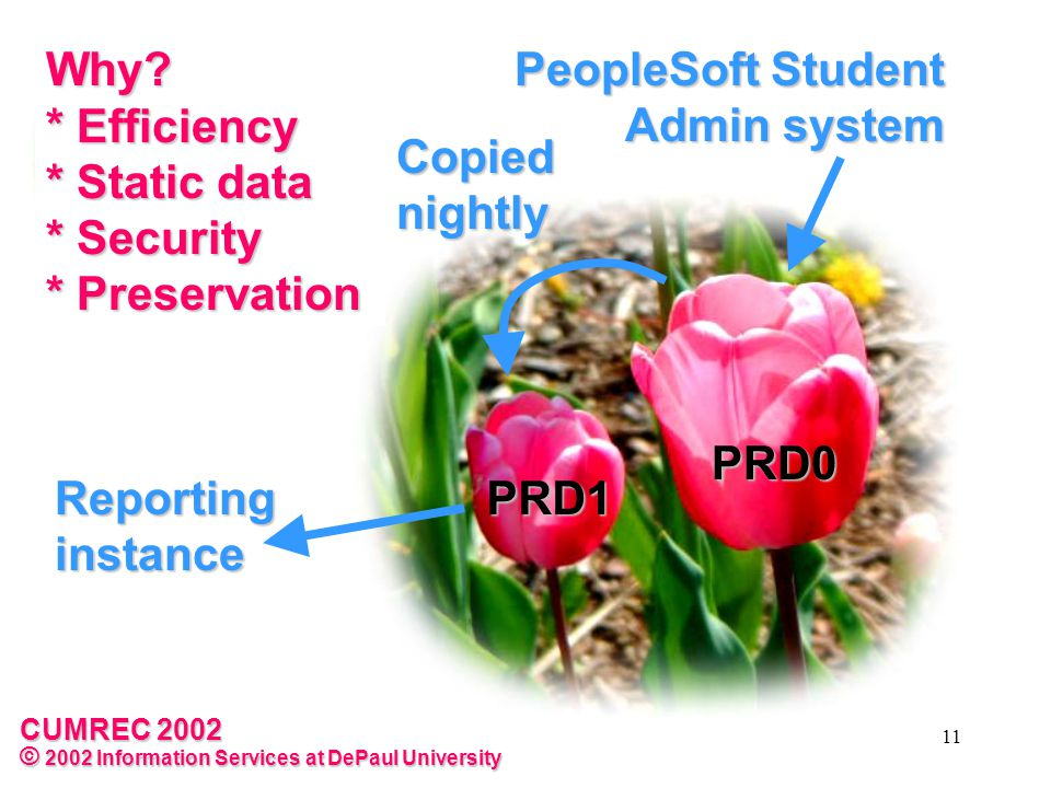 CUMREC 2002 © 2002 Information Services at DePaul University 11 Reporting instance PeopleSoft Student Admin system Why.