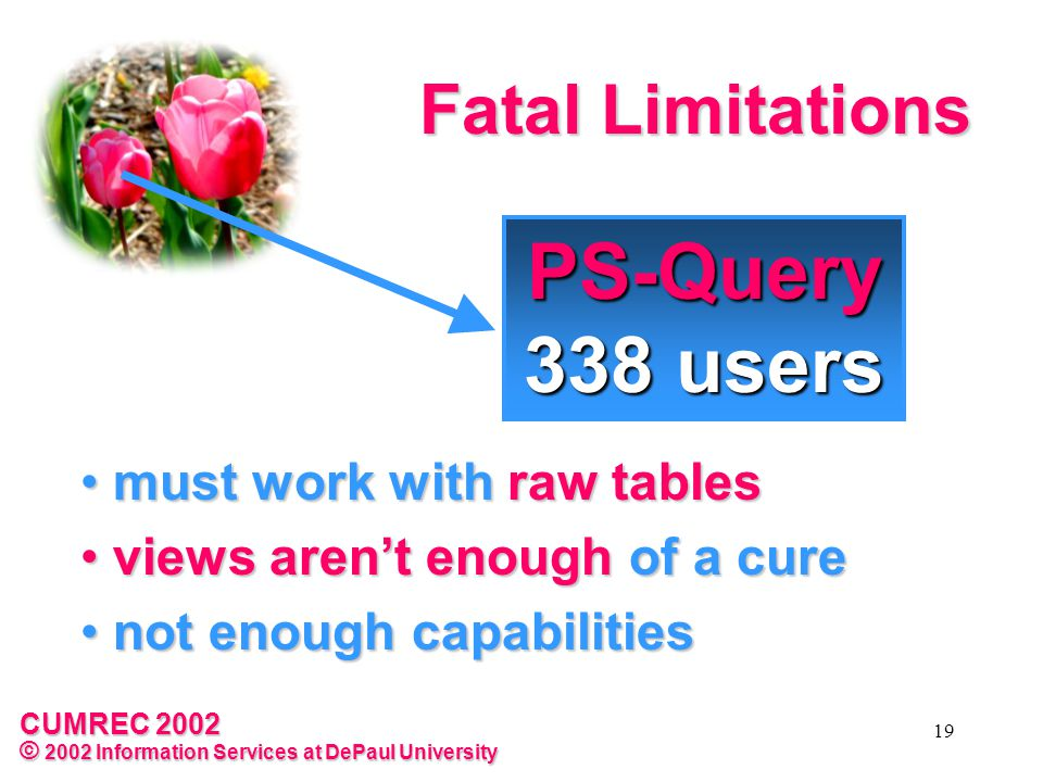 CUMREC 2002 © 2002 Information Services at DePaul University 19 Fatal Limitations must work with raw tables must work with raw tables views aren't enough of a cure views aren't enough of a cure not enough capabilities not enough capabilities PS-Query 338 users