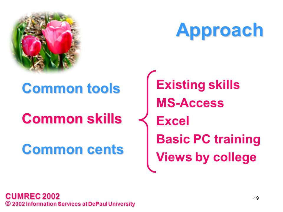 CUMREC 2002 © 2002 Information Services at DePaul University 49 Common tools Common skills Common cents Existing skills MS-Access Excel Basic PC training Views by college Approach