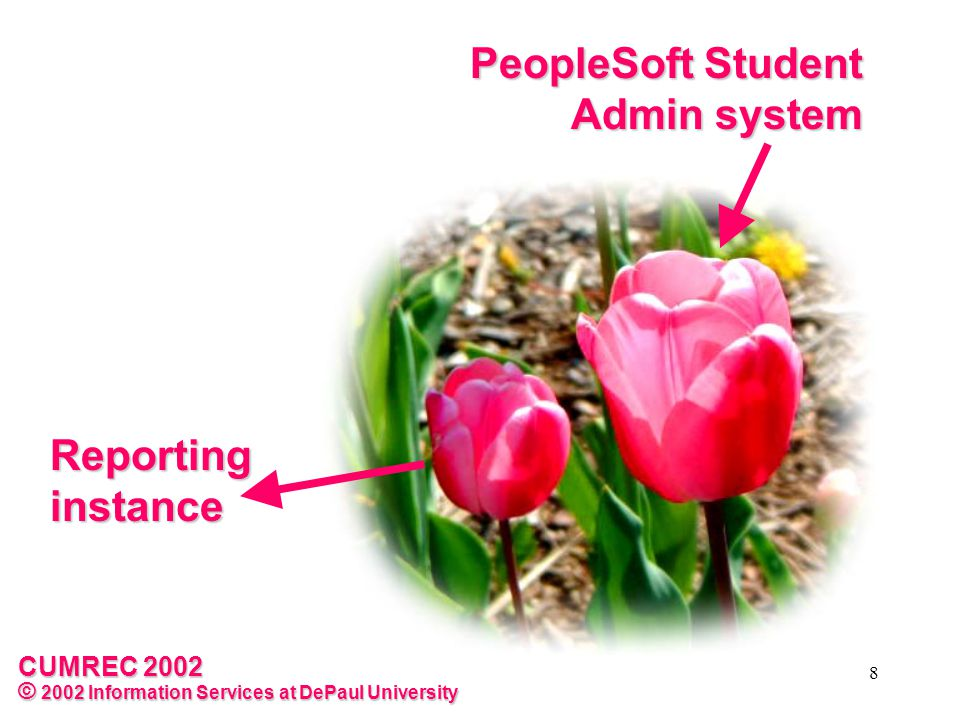 CUMREC 2002 © 2002 Information Services at DePaul University 9 Reporting instance PeopleSoft Student Admin system Reporting instance is a full copy of the on-line system