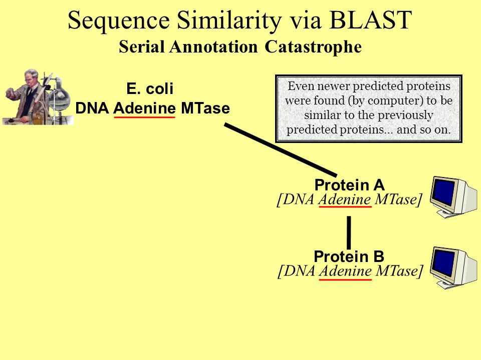 Sequence Similarity via BLAST Serial Annotation Catastrophe Protein A Protein B E.
