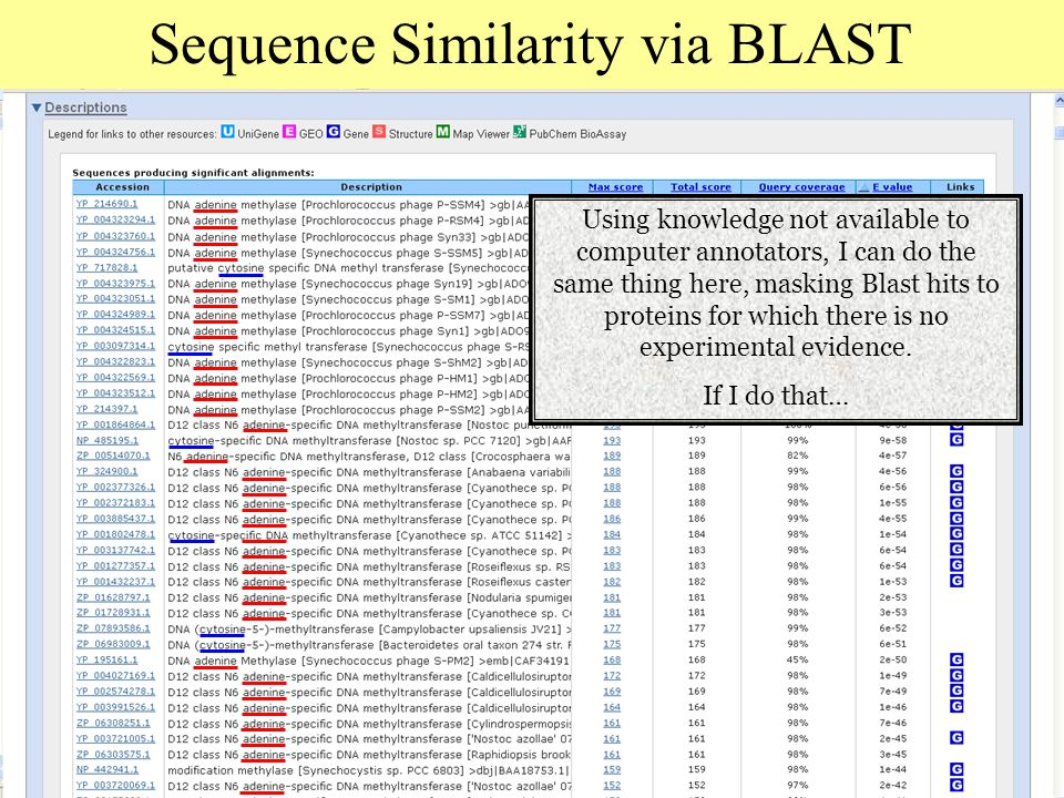 Sequence Similarity via BLAST Using knowledge not available to computer annotators, I can do the same thing here, masking Blast hits to proteins for which there is no experimental evidence.