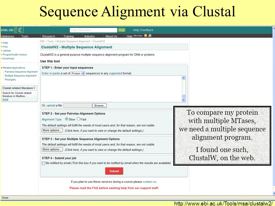 Sequence Alignment via Clustal To compare my protein with multiple MTases, we need a multiple sequence alignment program.