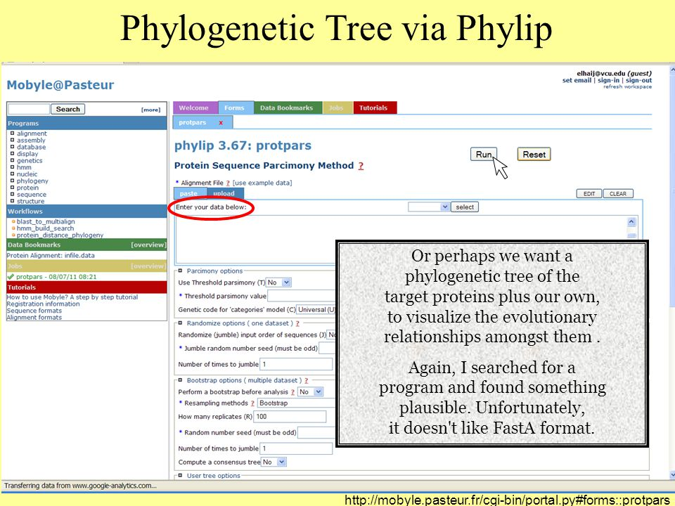 Phylogenetic Tree via Phylip Or perhaps we want a phylogenetic tree of the target proteins plus our own, to visualize the evolutionary relationships amongst them.