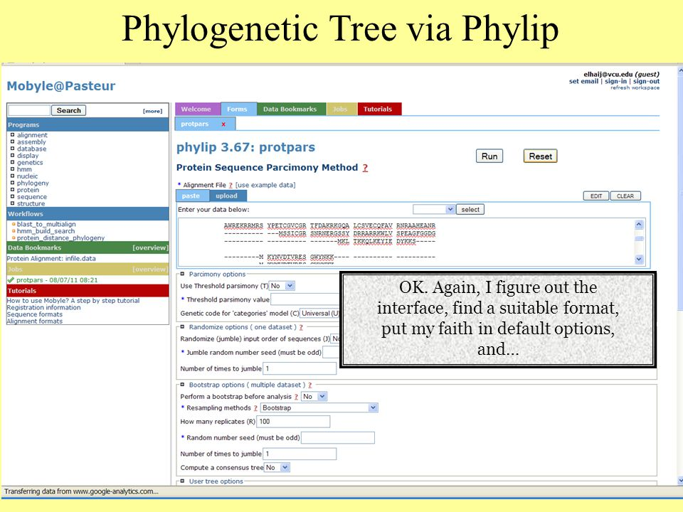 Phylogenetic Tree via Phylip OK.