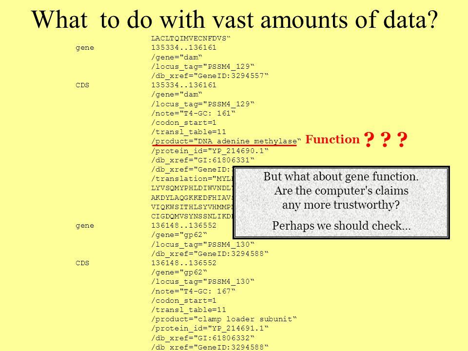 LACLTQIMVECNFDVS gene 135334..136161 /gene= dam /locus_tag= PSSM4_129 /db_xref= GeneID:3294557 CDS 135334..136161 /gene= dam /locus_tag= PSSM4_129 /note= T4-GC: 161 /codon_start=1 /transl_table=11 /product= DNA adenine methylase /protein_id= YP_214690.1 /db_xref= GI:61806331 /db_xref= GeneID:3294557 /translation= MYLKTPLRYPGGKSRAVKKMAQYFPDFNNYKEFREPFLGGGSVA LYVSQMYPHLDIWVNDLYTPLATFWKVLQTEGIELYNELVQLKTRHPDPASARGLFLE AKDYLAQGKKEDFHIAVSFYIINKCSFSGLSESSSFSPQASDSNFSMRGIEKLRFYEQ VIQKWSITHLSYVHMMPNSKEVFTYLDPPYEIKSKLYGKSGSMHKGFDHDEFAHACNT CIGDQMVSYNSSNLIKDRFHGWNAHEYDHTYTMRSVGDYMTDQQQRKELVLTNYGIR gene 136148..136552 /gene= gp62 /locus_tag= PSSM4_130 /db_xref= GeneID:3294588 CDS 136148..136552 /gene= gp62 /locus_tag= PSSM4_130 /note= T4-GC: 167 /codon_start=1 /transl_table=11 /product= clamp loader subunit /protein_id= YP_214691.1 /db_xref= GI:61806332 /db_xref= GeneID:3294588 /translation= MAYDERYPLKDYLNSINLNKNNLMDEDSDPAWKSKYPAYIINKC MSHHMDTVMYANEMNQYSFLDSKMQYDFYIHIVRPKRRFSPWGKKKKIDDLDLVKRYY GYSTDKAIQALRILSPNQIDYIKDKLNKGGKK gene 136549..136968 .
