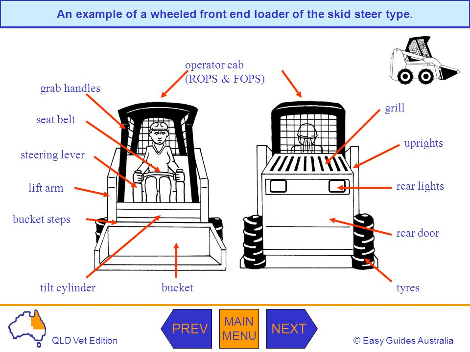 © Easy Guides AustraliaQLD Vet Edition MAIN MENU NEXTPREV An example of a wheeled front end loader of the skid steer type. operator cab (ROPS & FOPS)