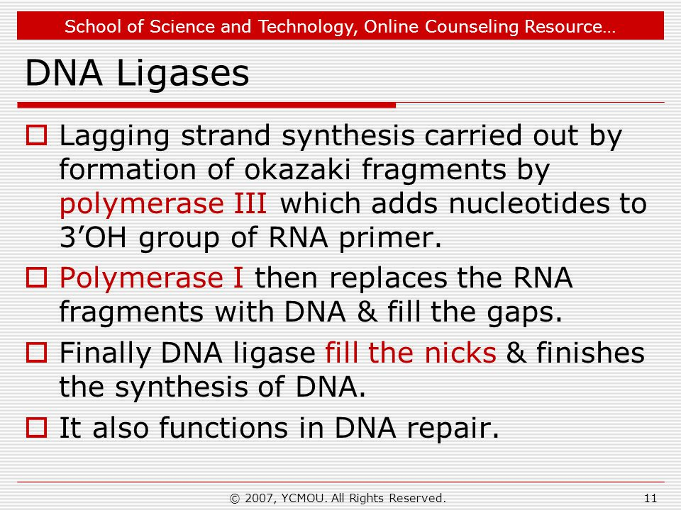 School of Science and Technology, Online Counseling Resource… DNA Ligases  Lagging strand synthesis carried out by formation of okazaki fragments by polymerase III which adds nucleotides to 3'OH group of RNA primer.