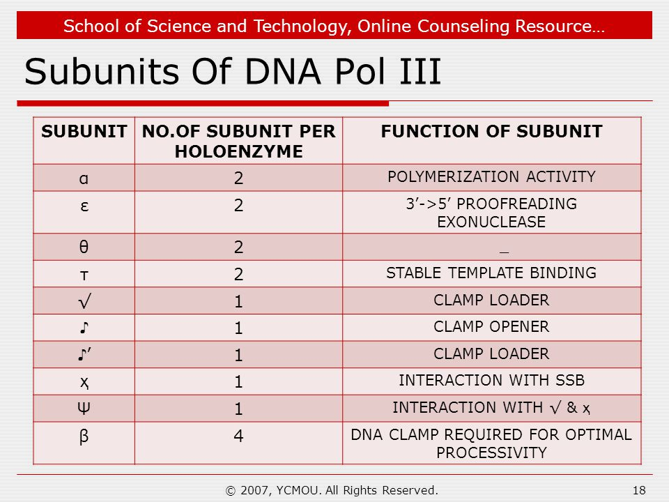 School of Science and Technology, Online Counseling Resource… Subunits Of DNA Pol III © 2007, YCMOU.