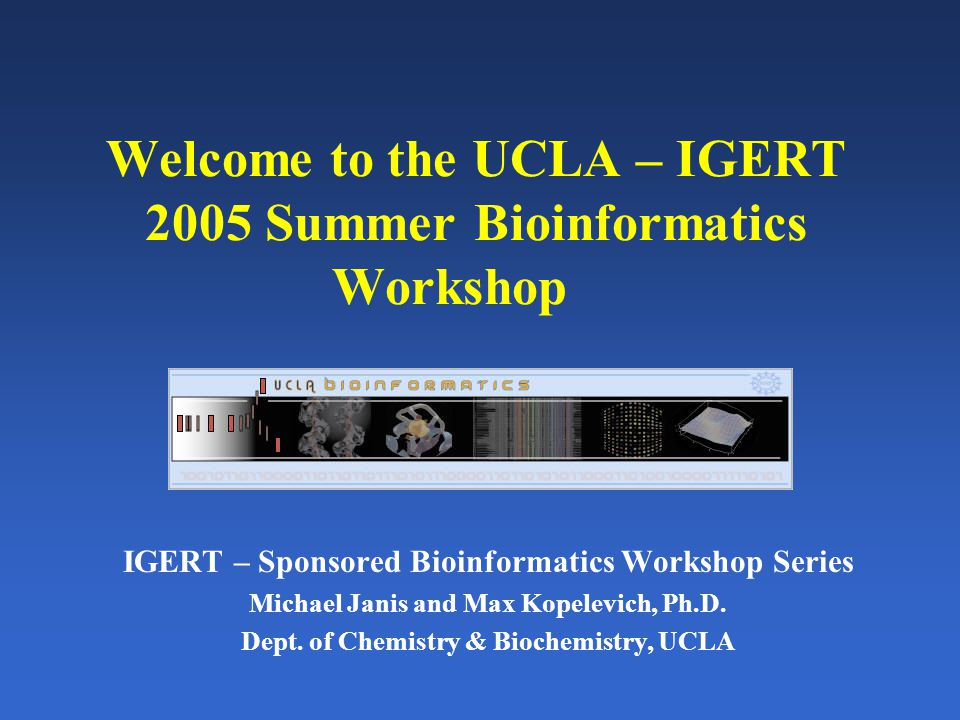 Welcome to the UCLA – IGERT 2005 Summer Bioinformatics Workshop IGERT – Sponsored Bioinformatics Workshop Series Michael Janis and Max Kopelevich, Ph.D.