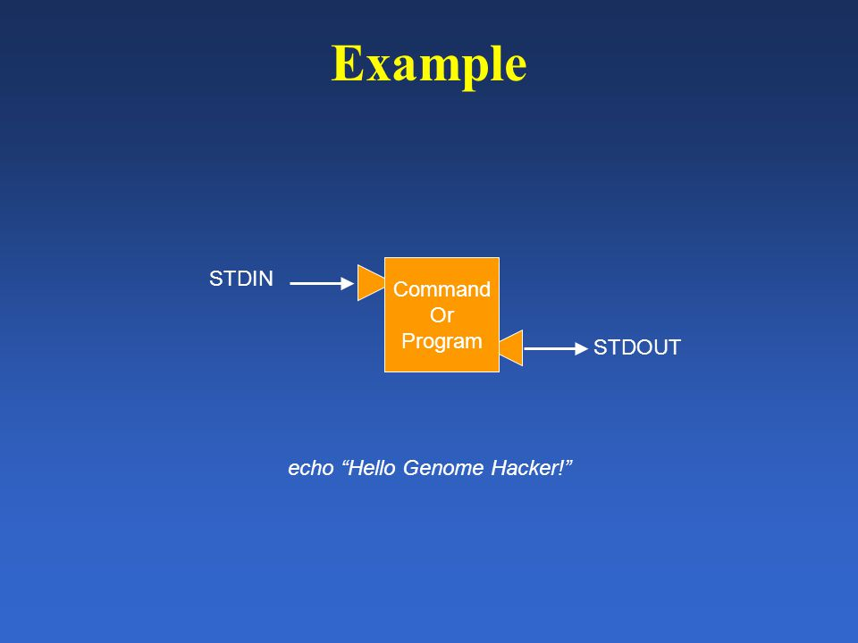 Example Command Or Program STDIN STDOUT echo Hello Genome Hacker!