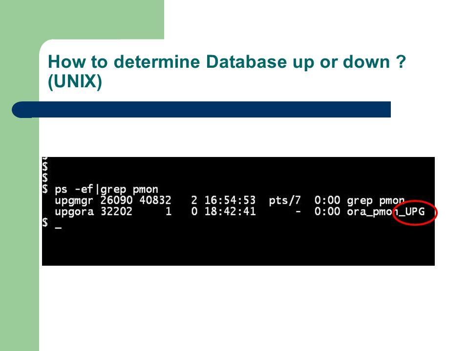 Logging into Database