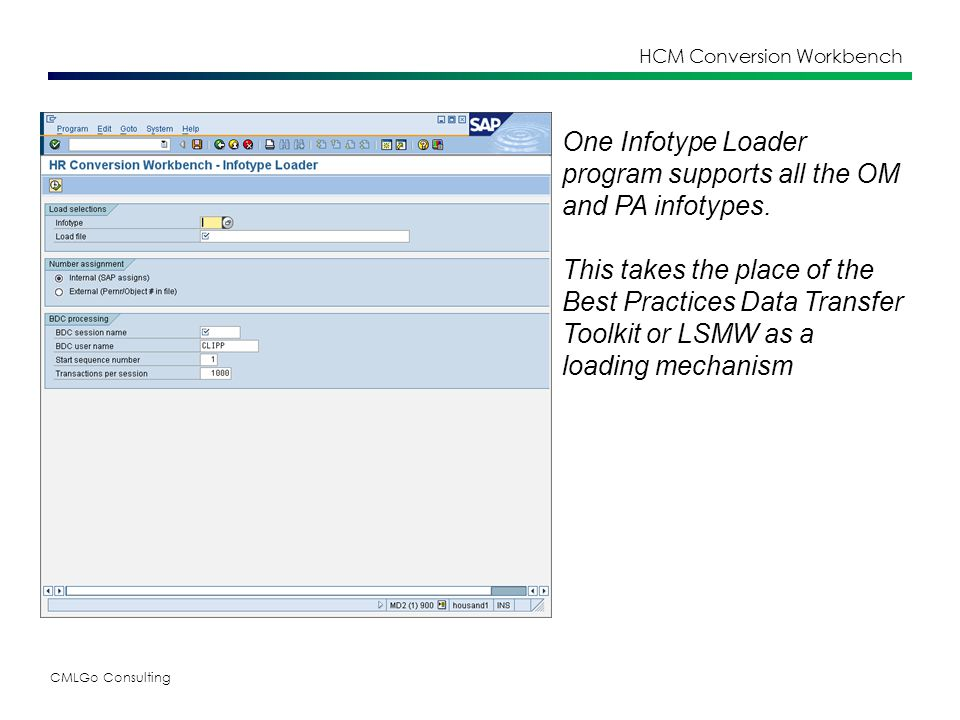 CMLGo Consulting HCM Conversion Workbench One Infotype Loader program supports all the OM and PA infotypes.