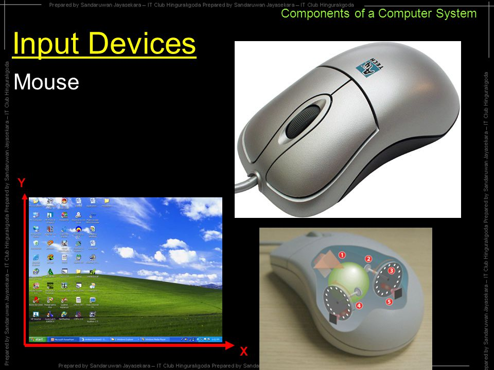 Components of a Computer System Input Devices Mouse X Y