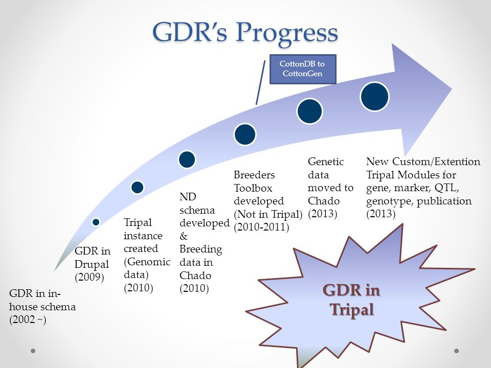 GDR in Tripal GDR's Progress GDR in in- house schema (2002 ~) New Custom/Extention Tripal Modules for gene, marker, QTL, genotype, publication (2013) GDR in Drupal (2009) Tripal instance created (Genomic data) (2010) ND schema developed & Breeding data in Chado (2010) Breeders Toolbox developed (Not in Tripal) (2010-2011) Genetic data moved to Chado (2013) CottonDB to CottonGen