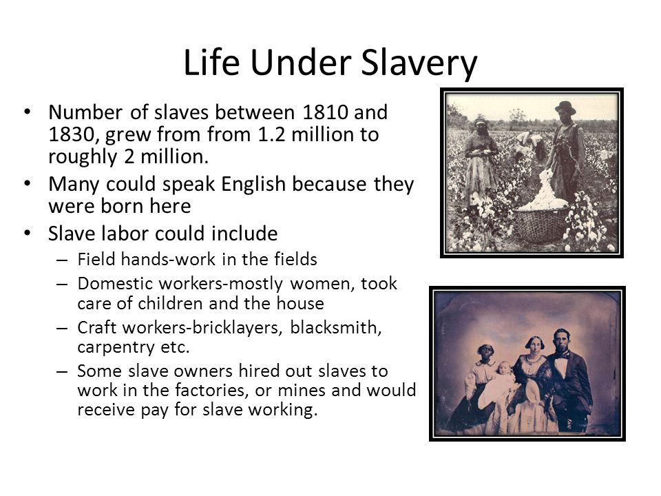 Life Under Slavery Number of slaves between 1810 and 1830, grew from from 1.2 million to roughly 2 million. Many could speak English because they were