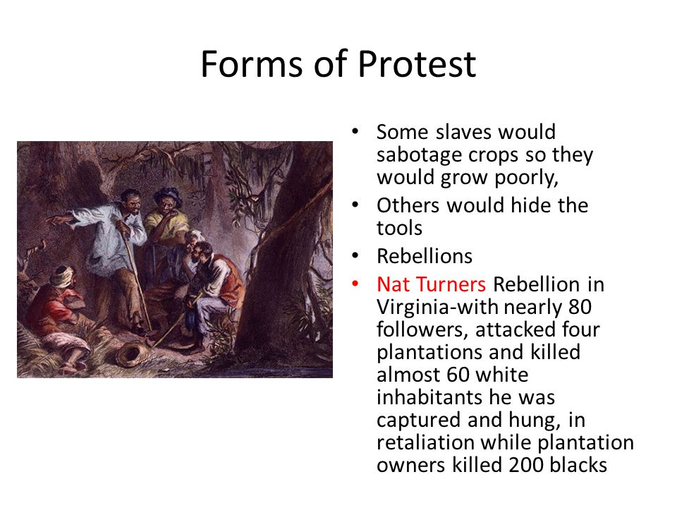 Forms of Protest Some slaves would sabotage crops so they would grow poorly, Others would hide the tools Rebellions Nat Turners Rebellion in Virginia-with nearly 80 followers, attacked four plantations and killed almost 60 white inhabitants he was captured and hung, in retaliation while plantation owners killed 200 blacks
