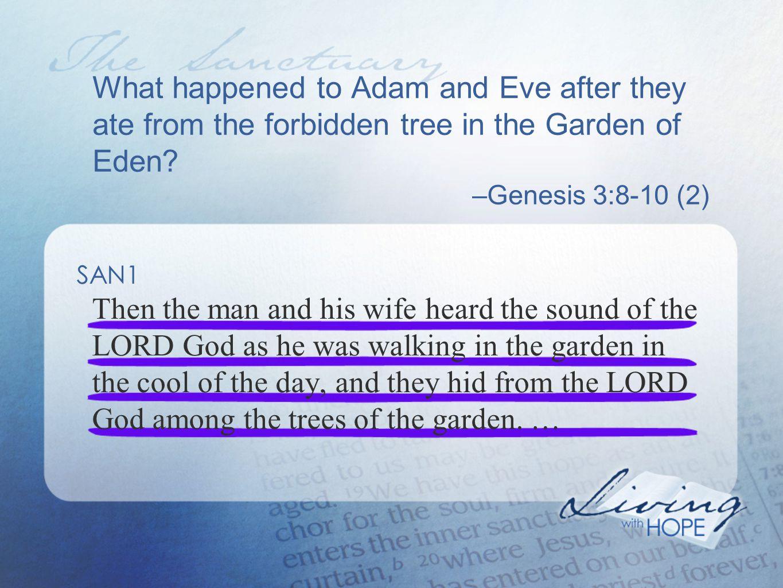 What happens now when we sin? –1 John 2:1 (844) SAN13