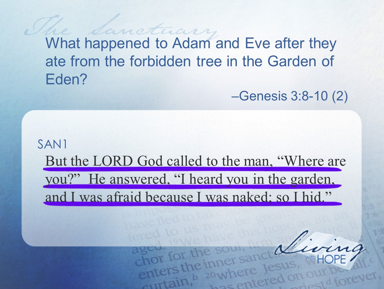 What happens now when we sin.