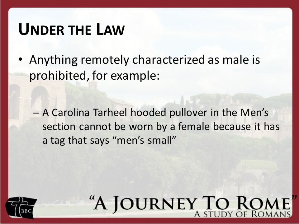 U NDER THE L AW Anything remotely characterized as male is prohibited, for example: – A Carolina Tarheel hooded pullover in the Men's section cannot be worn by a female because it has a tag that says men's small
