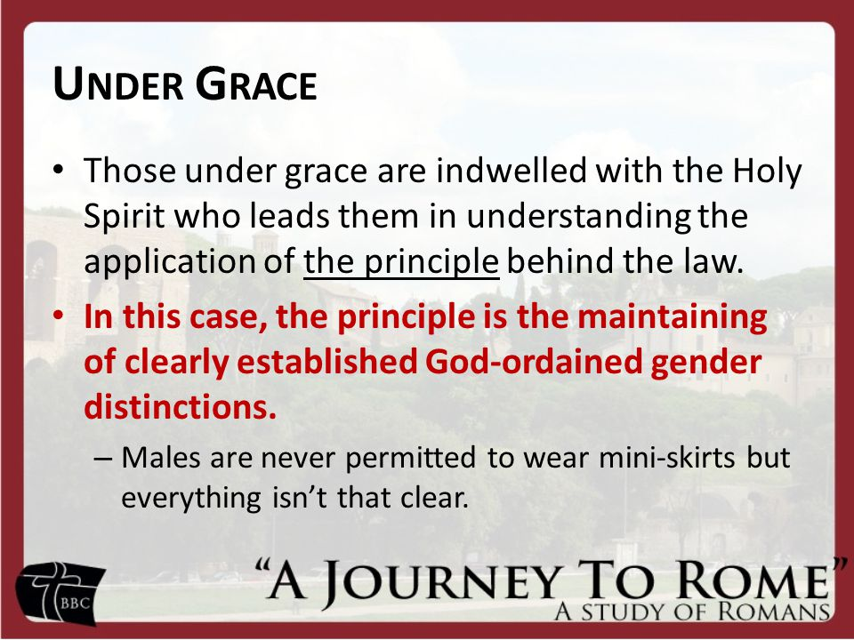 U NDER G RACE Those under grace are indwelled with the Holy Spirit who leads them in understanding the application of the principle behind the law.